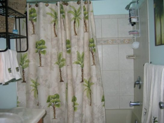 Second Floor Full Bath 2