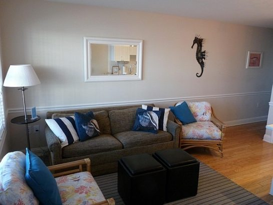 Tastefully Decorated And Spacious Living Area