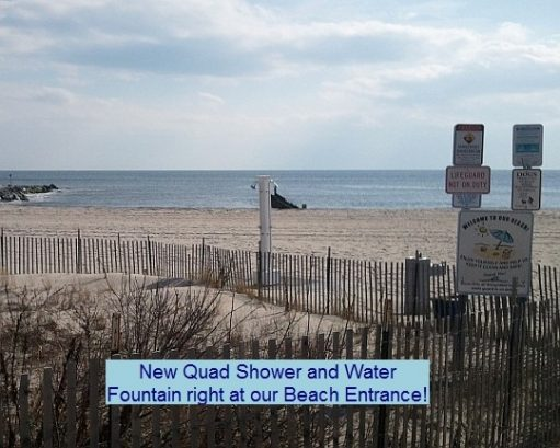 Quad shower and water fountain at our beach