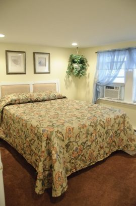 Suite A - Spacious 675 sq. ft., 2 Bedroom, sleeps 8