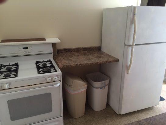 LIL COTTAGE LOWER : Kitchen