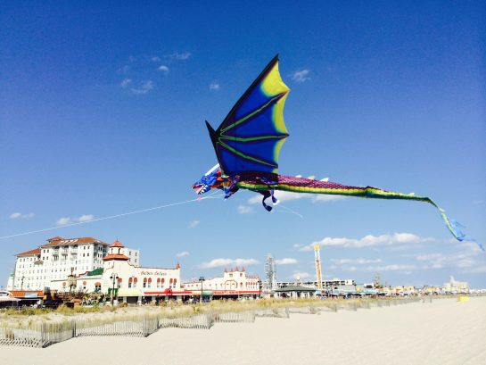 Go Fly A Kite - with your family and friends on the beach!