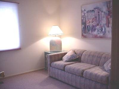 Bedroom 3 / Den with Queen Sleeper Sofa