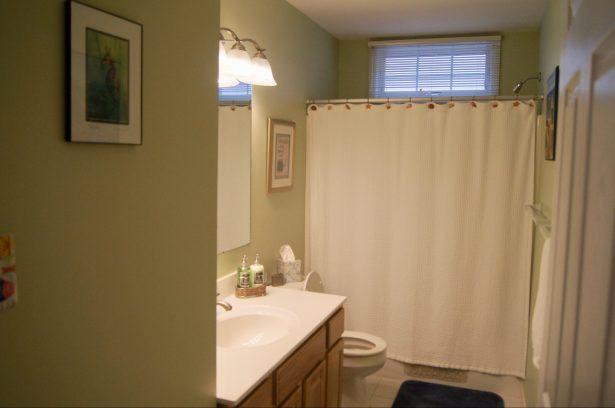 Main Bath #1