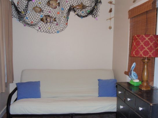 Enclosed Front Room / 3rd Bedroom w/Full futon (31 Lafayette Ave)