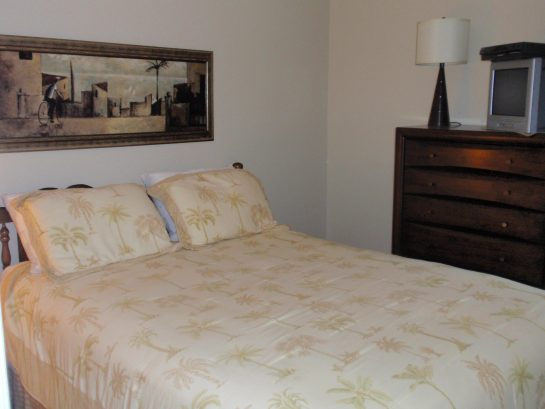 Queen Bed in Main Bedroom (33 A Lafayette Ave)