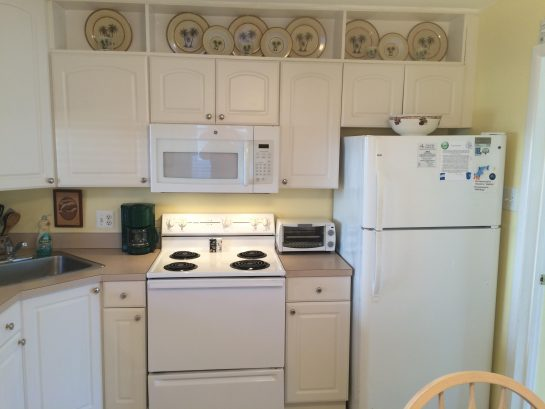 Modern, clean kitchen with stove, fridge, microwave and dishwasher.