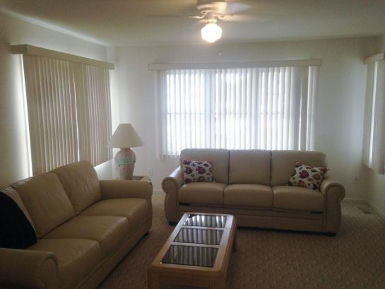 New Leather Sofa's in downstairs Den