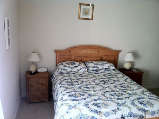 Master Bedroom With Attached Full Bathroom & Walk-In Closet.