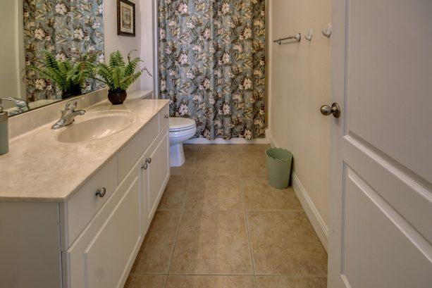 Bathroom for Master Bedroom (back)