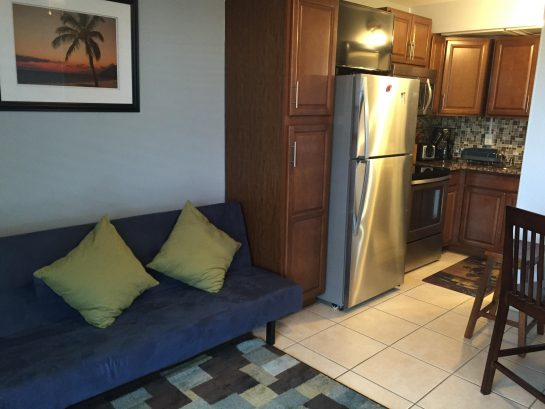 Room 103B, New full kitchen, futon, flat screen tv, wifi. Toaster, Coffee Maker
