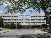 Biscayne Suites #303