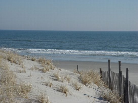 Enjoy The Most Beautiful Beaches In New Jersey