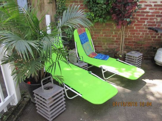 Lounge chairs, palm trees, and kitchen herbs