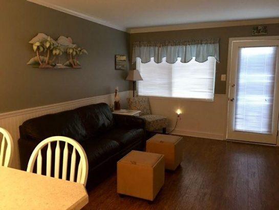 Living room with queen sleeper.