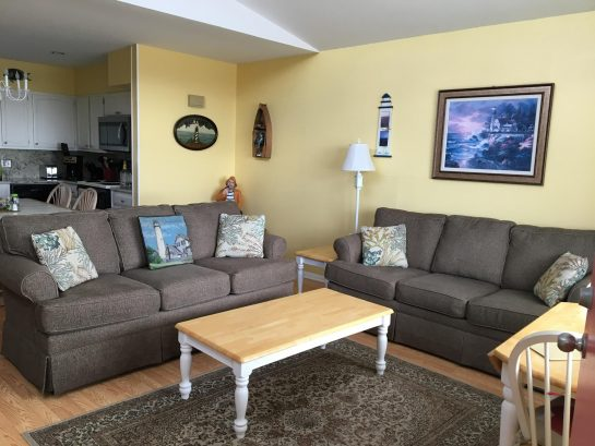 Two new sofas- one is a pull out sleeper