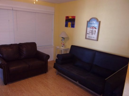 Futon and Pull out couch