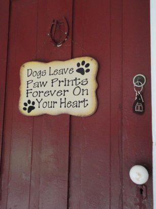 Dogs rule!!!