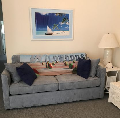 Lining Room- Pull Out Sofa Bed