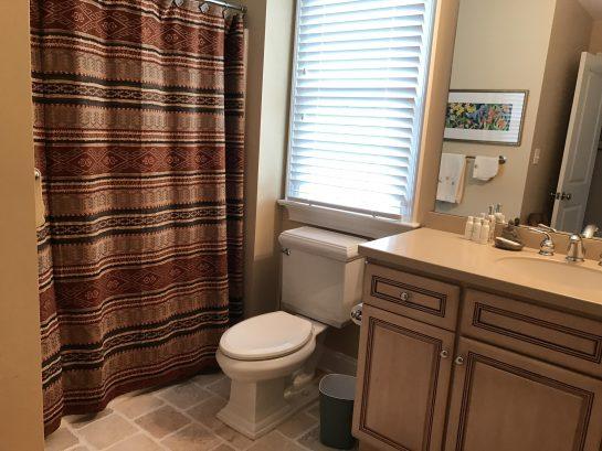 Bathroom with combo tub/shower adjoins bedroom.