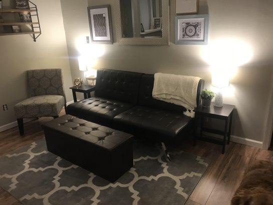 Living Area includes seating for 5 or more and a futon