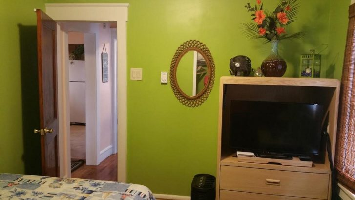 """The Middle Bedroom that we like to call """"Jungle Oasis""""."""