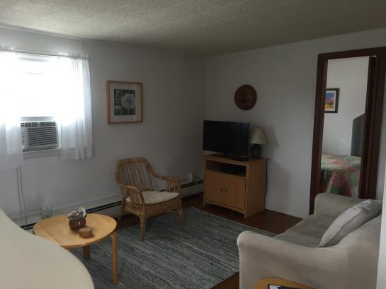 2nd Floor Apartment - Living Room