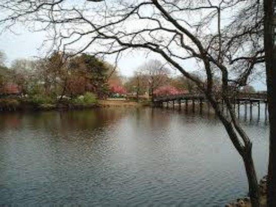 Spring Lake Lake