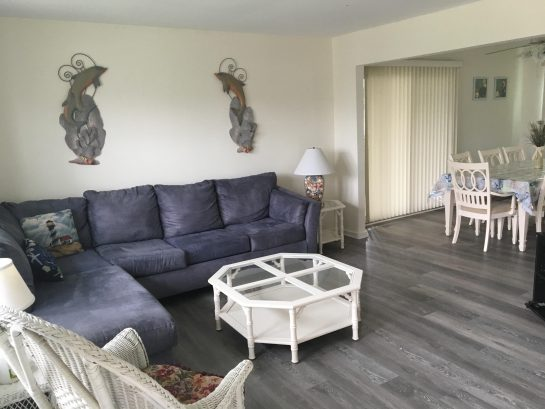 Living room with pull out sofa/dining room